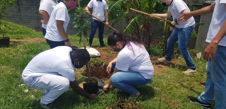 Jovens Aprendizes do projeto petrobras participam de plantação de árvores